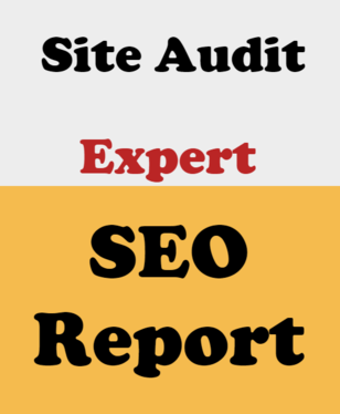 Provide Expert SEO Report for Your Website