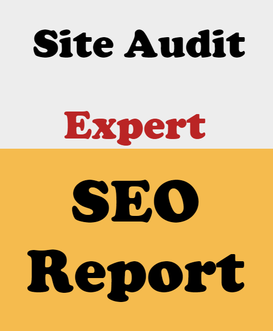 I will Provide Expert SEO Report for Your Website