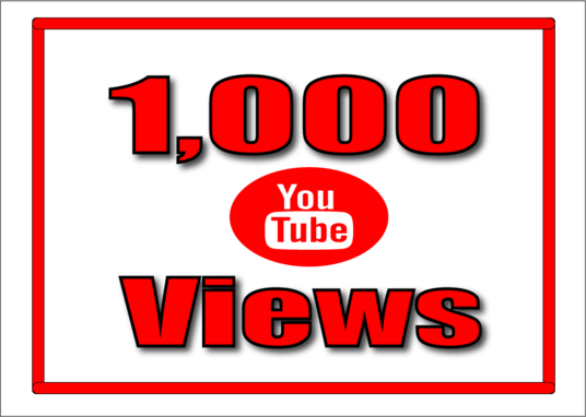 I will give 1000 super high quality YouTube Views real and permanent