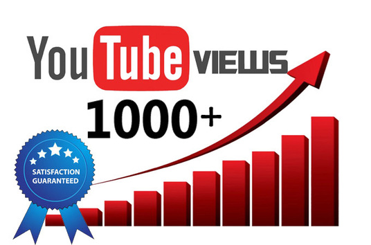 I will give you 1000+ high quality non drop YouTube views