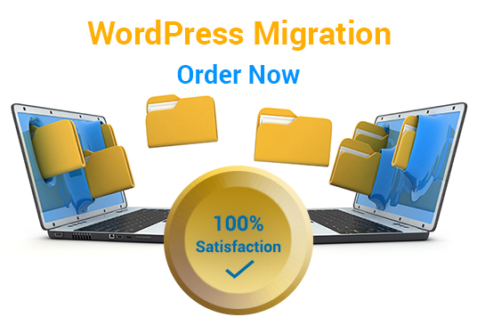 I will backup, clone, migrate, move / transfer your wordpress website