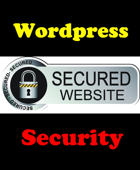 I will Design Security Strategy to Secure & Protect Wordpress Website