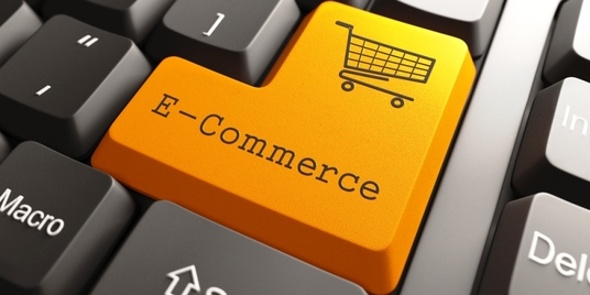 I will create ecommerce  WordPress  website for your online business
