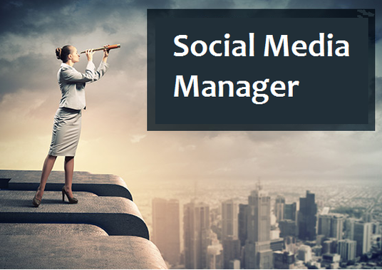 I will Manage your Social Media accounts for 1 Month