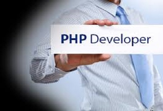 I will be your PHP developer