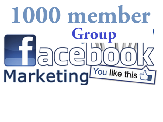 I will add 1000 members to your facebook group