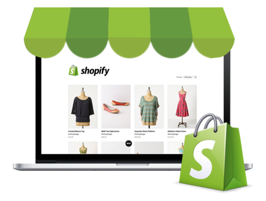 I will create a professional ecommerce website