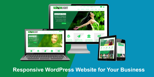 I will create a professional and fully responsive WordPress website