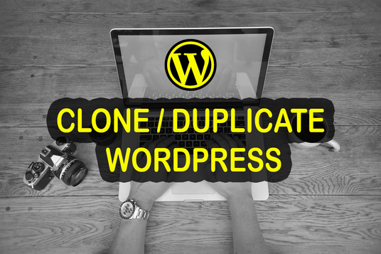 I will clone or duplicate any WordPress  website