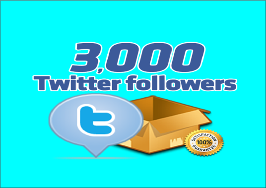 I will Give Real 3,000 Twitter Followers