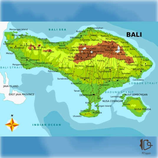 I will create editable map vector