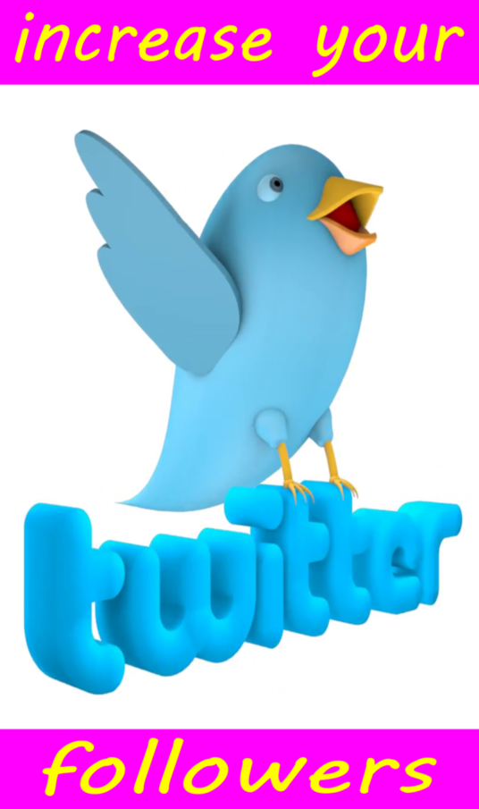 I will Do Promotion To Increase Organically Permanent Twitter  Followers