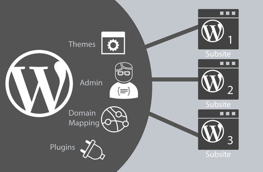 Install Wordpress Multisite, Setup Subsite with Theme & Plugins