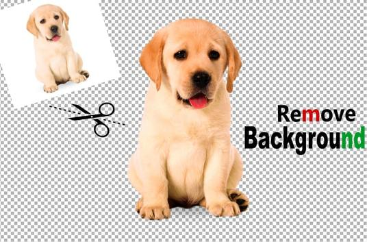 I will remove background from any 15 photos or images in 24 hours