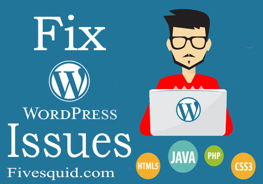 I will  solve your Wordpress blogs css,html and other issues