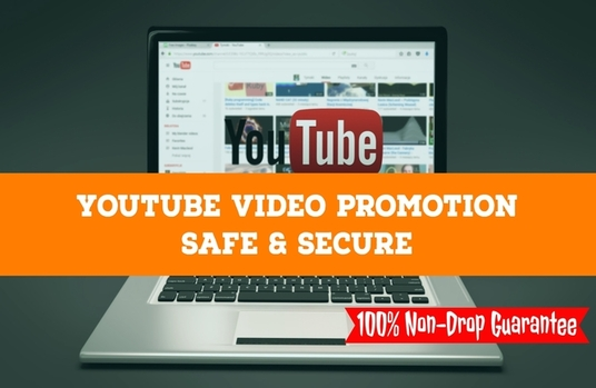 I will give you 1500+ Safe YouTube view within 7 days