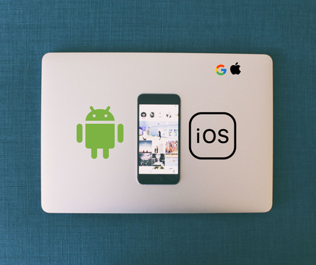 convert your website to an Android or iOS APP