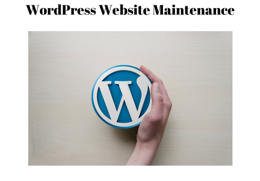 I will take care of your WordPress website maintenance