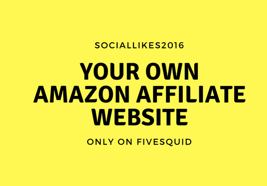 I will Create Amazon Affiliate Website store