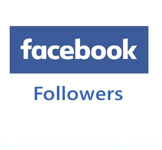 I will provide  500  facebook followers