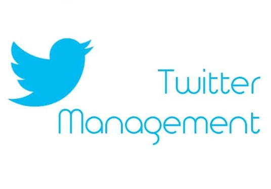 I will Manage Your Twitter Account For 1 Month