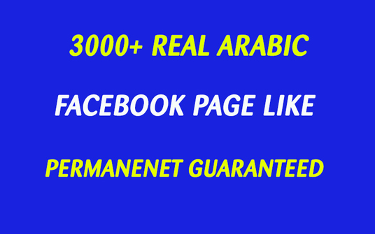 I will Add 3000 Real Arabic Like To Your Facebook Page