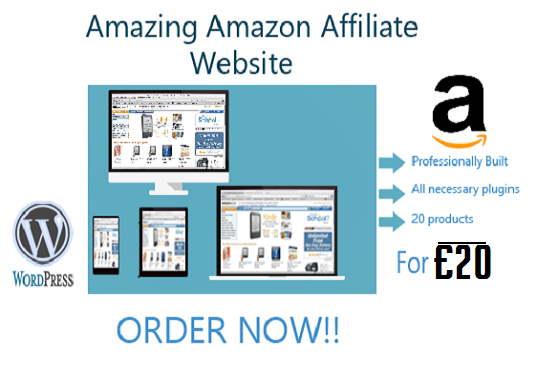 I will create an amazing amazon affiliate website