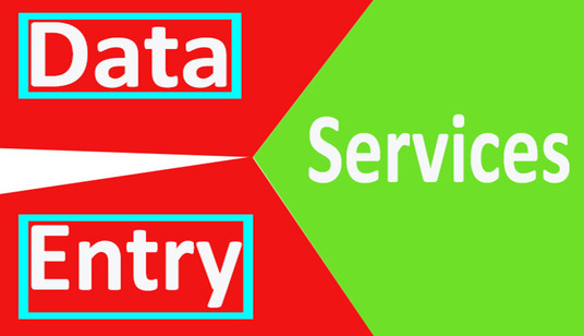 I will Do Any Type Of Data Entry