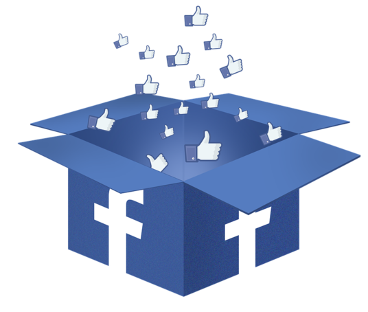 I will add +1000 Real Followers to Facebook page