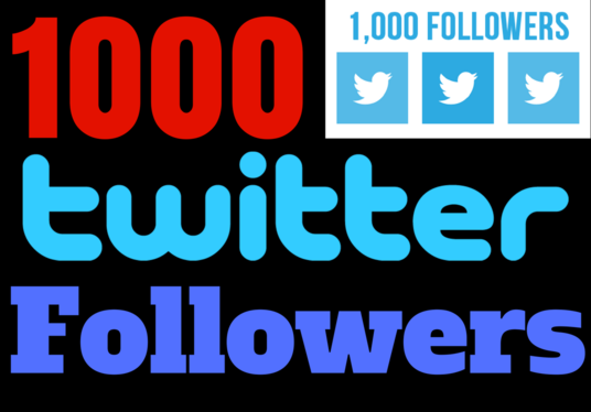 I will give you 200+ Twitter Followers