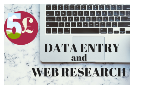 I will do expert data entry and web research