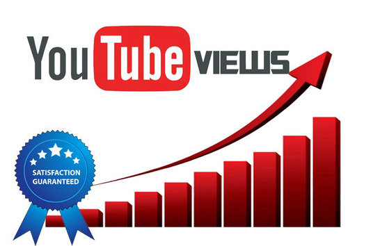 I will provide 2000 YouTube views