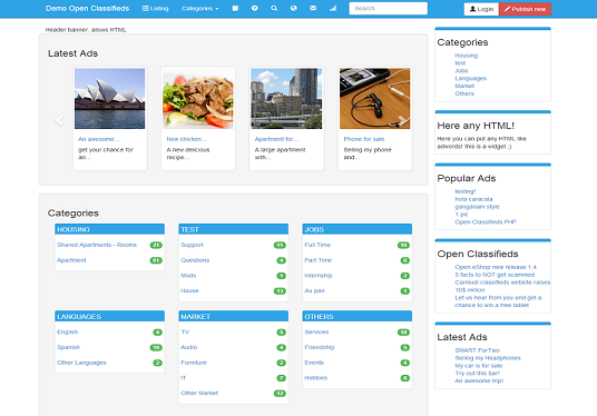 I will create a classified WordPress website