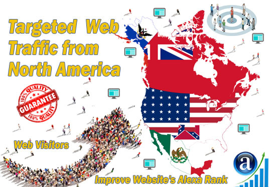 I will send 25000 web visitors targeted organic traffic from North America