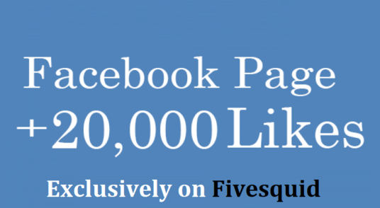 I will do 20,000 real Facebook fan pages likes
