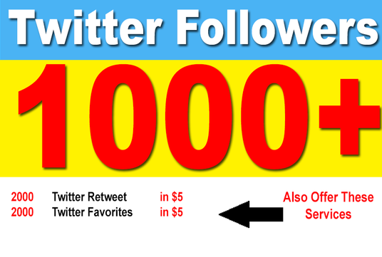I will provide 1000 Permanent Twitter Followers