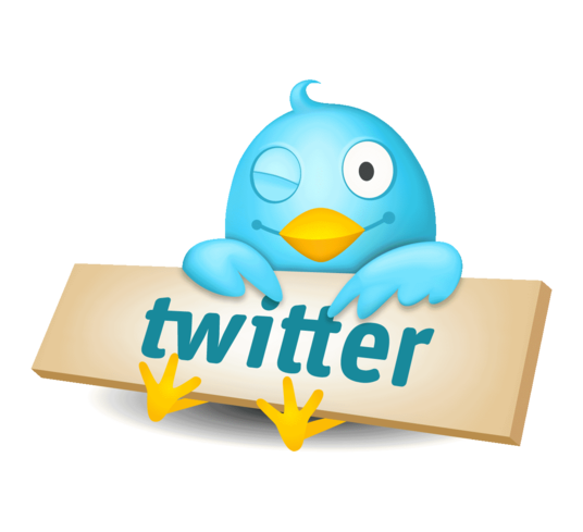 I will create your Twitter Business Page, get you followers and provide advice on how to use it