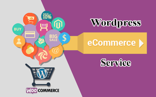 I will create a beautiful eCommerce store using WordPress