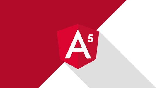 I will Create a Angular 5 Application