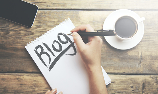 I will write a professional blog or article on any subject you choose