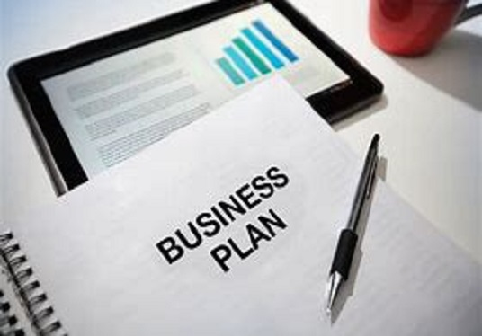 I will create a mini business plan for your business