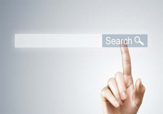 I will Add Search option On Your Website