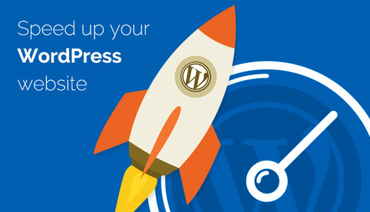 I will speed up your wordpress web site with in 24 hours