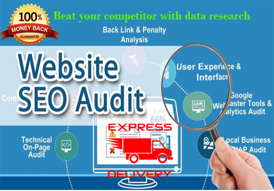 I will do seo audit to your website with exact research