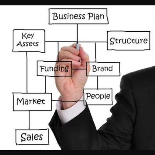 I will write a functional business plan, financial plan or investment proposal