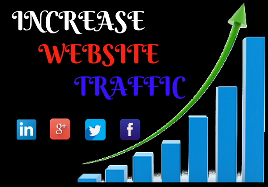 I will Do Website Promotion for Your Business