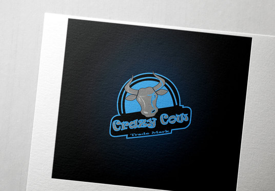 I will design a professional custom logo design for your company