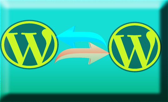 I will Clone, Move, Transfer or  do Migration of your Website