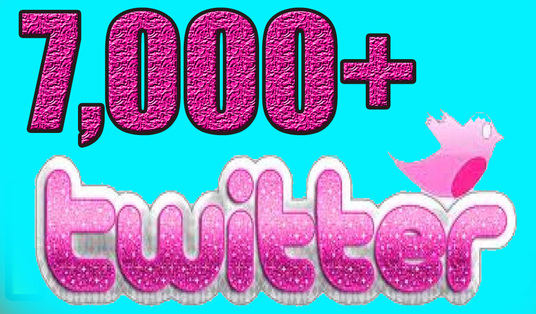 I will 7,000+ High Quality Twitter Followers