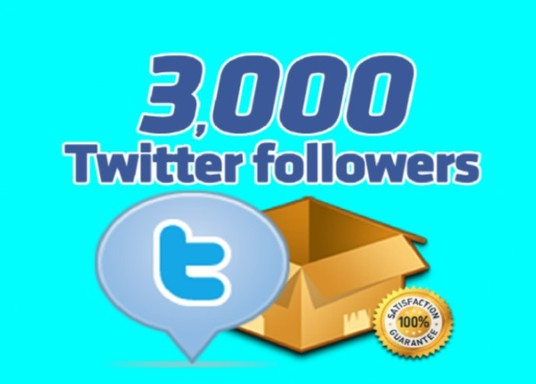 I will give you 3000 Plus Non Drop Twitter followers